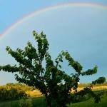 Incorniciati da un arcobaleno