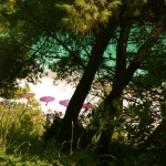 Spiaggia San Michele - Sassi Neri