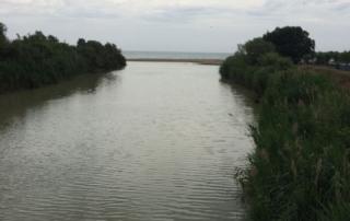 foto 1 musone
